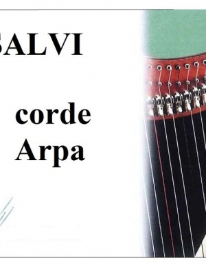 Salvi Corda  4  Ottava SI Budello Lever  N.25